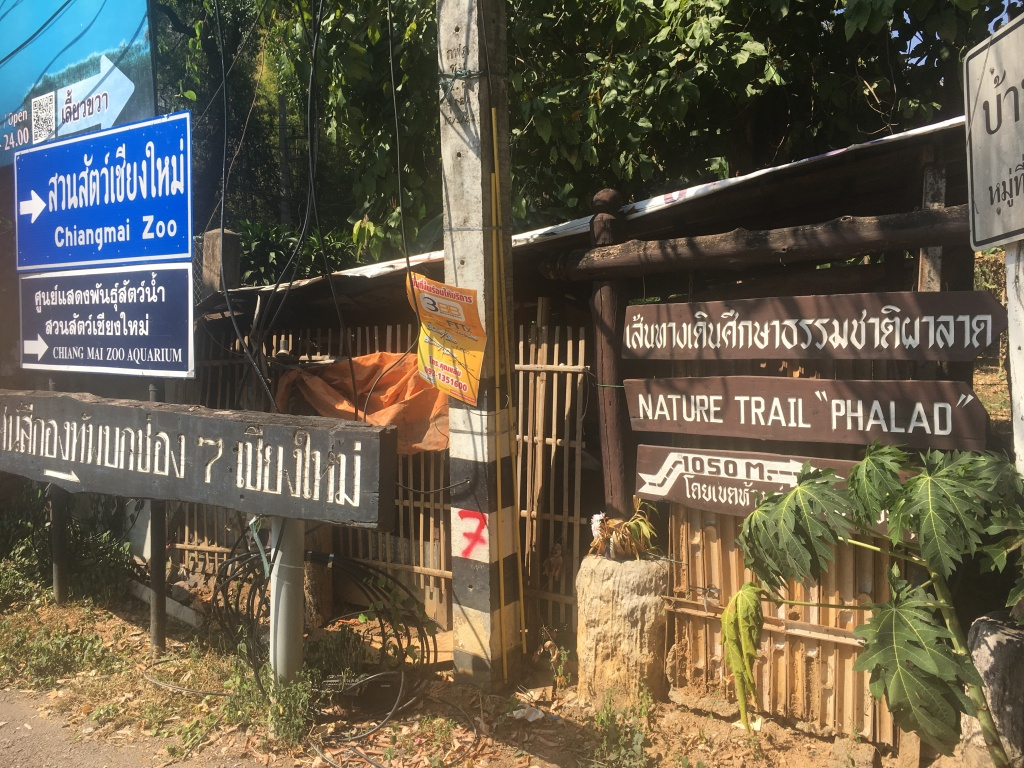 The end of Doi Suthep road with signs pointing to the direction of the trail.